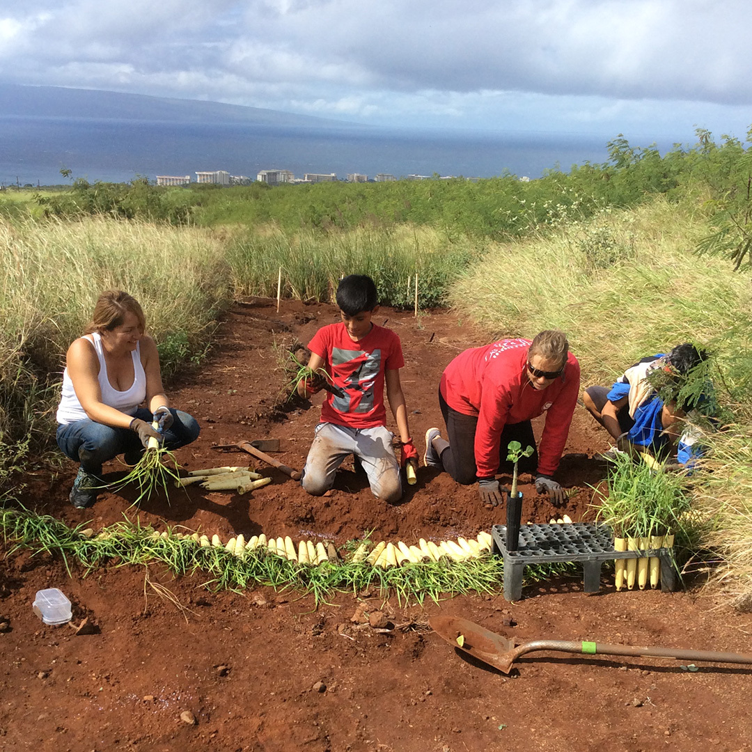Coral Reef Alliance Maui