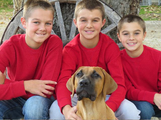 Hsi Boys With Zeus