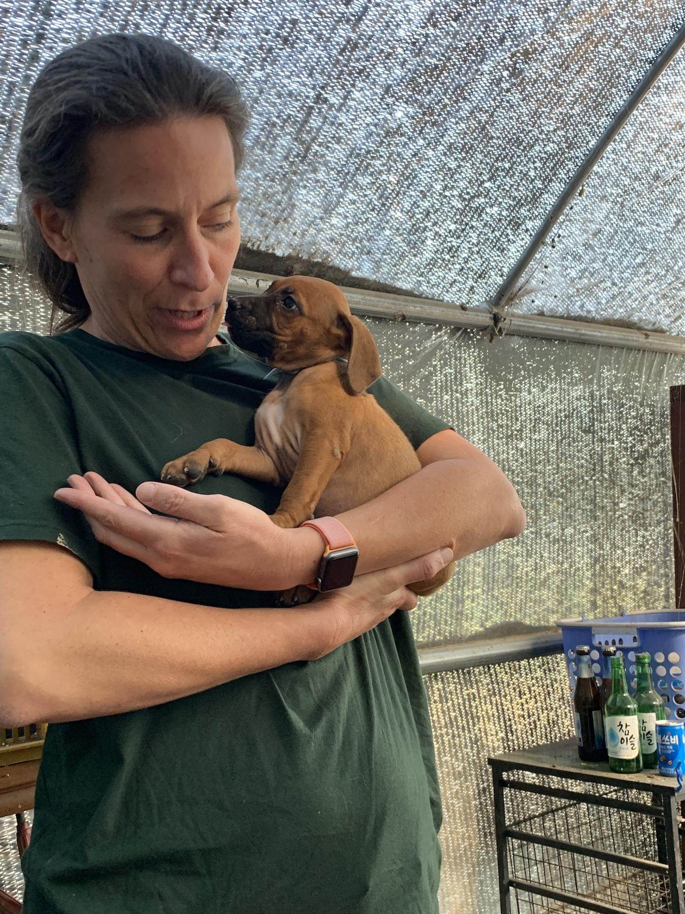 Hsi Volunteer On Farm With Puppy