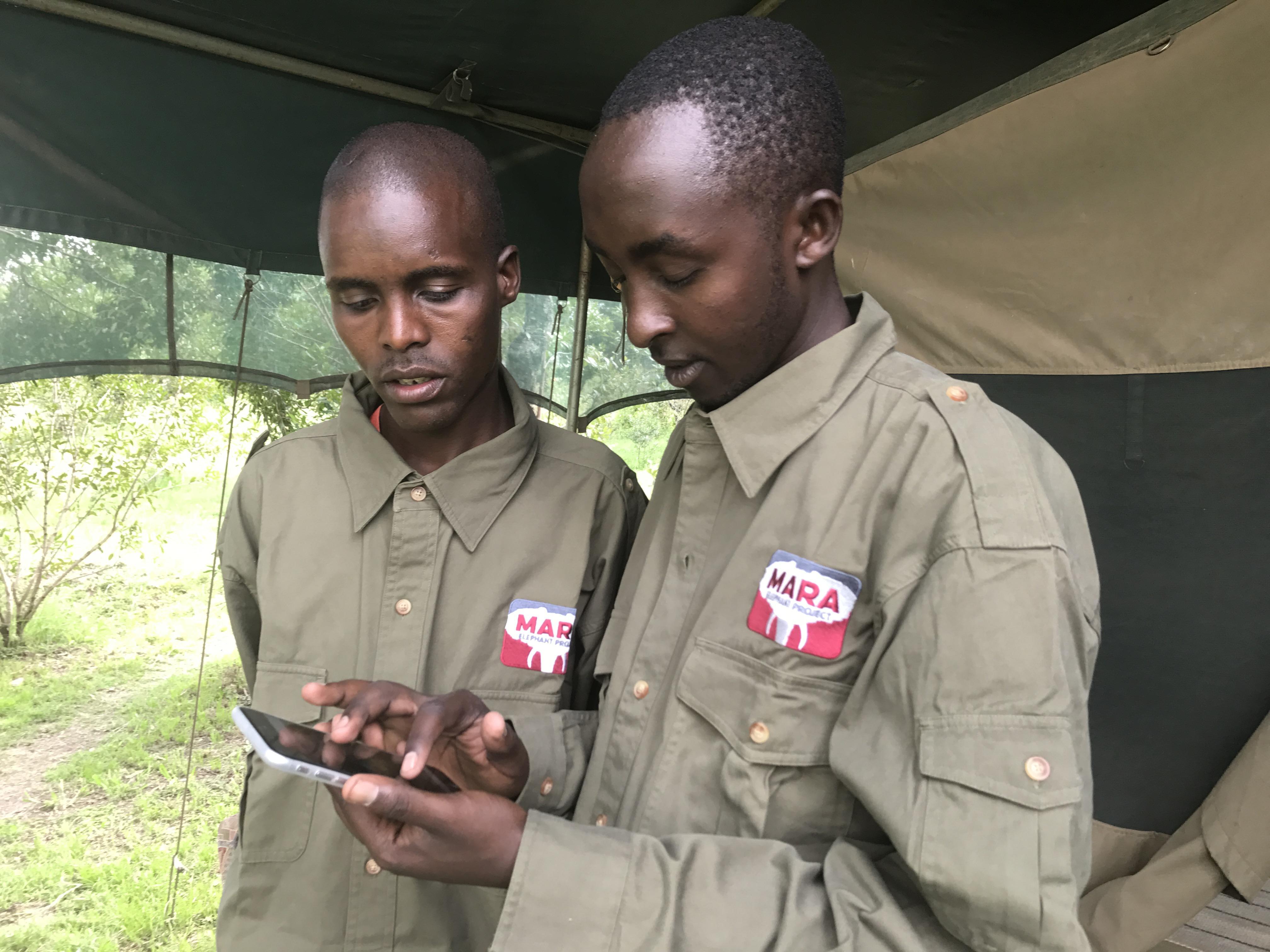 Mara Rangers Tracking Eles