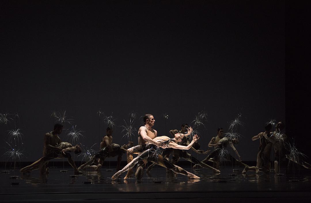 Sf Ballet In Pitas Björk Ballet